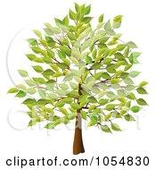 Royalty Free Vector Clip Art Illustration Of A Summer Tree by elaineitalia #COLLC1054830-0046