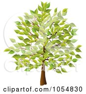 Royalty Free Vector Clip Art Illustration Of A Summer Tree by elaineitalia