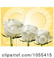 Royalty Free Vector Clip Art Illustration Of Three White Roses On Yellow Rays