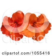 Royalty Free Vector Clip Art Illustration Of Orange And Red Hibiscus Flowers by elaineitalia