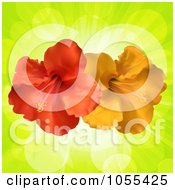 Royalty Free Vector Clip Art Illustration Of Orange And Red Hibiscus Flowers On Green Rays by elaineitalia