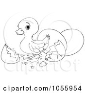 Royalty Free Vector Clip Art Illustration Of A Coloring Page Outline Of A Cute Easter Duck Hatching by Pushkin