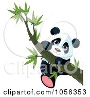 Royalty Free Vector Clip Art Illustration Of A Cute Baby Panda Hanging From A Tree Branch