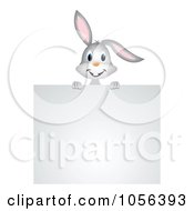 Gray Rabbit Looking Over A Blank Sign Board