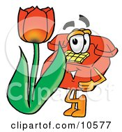 Red Telephone Mascot Cartoon Character With A Red Tulip Flower In The Spring