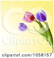 Royalty Free Vector Clip Art Illustration Of Purple And Pink Spring Tulips Over Yellow by elaineitalia