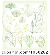 Royalty Free Vector Clip Art Illustration Of A Digital Collage Of Leaves by Eugene