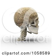 Royalty Free CGI Clip Art Illustration Of A 3d Transparent Skull With The Visible Brain 2
