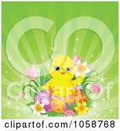 Royalty Free Vector Clip Art Illustration Of A Cute Chick Sitting On Easter Eggs And Flowers Over Green Rays