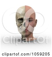 Royalty Free CGI Clip Art Illustration Of A 3d Male Head Showing Half With Flesh Half With Bone 1 by Michael Schmeling