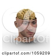 Royalty Free CGI Clip Art Illustration Of A 3d Male Head With Exposed Brain