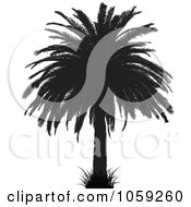 Royalty Free Vector Clip Art Illustration Of A Silhouetted Black And White Tropical Palm Tree 2