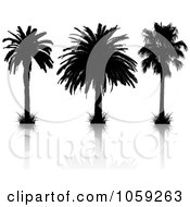 Royalty Free Vector Clip Art Illustration Of A Digital Collage Of Silhouetted Black And White Tropical Palm Trees And Reflections