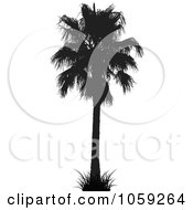 Royalty Free Vector Clip Art Illustration Of A Silhouetted Black And White Tropical Palm Tree 3