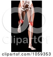 Royalty Free CGI Clip Art Illustration Of A 3d Womans Body Running With Knee Pain Highlighted