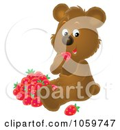 Royalty Free Clip Art Illustration Of A Bear Eating Strawberries