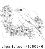 Coloring Page Outline Of A Bird And Blossoms
