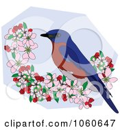 Bluebird Perched In Apple Blossoms 3