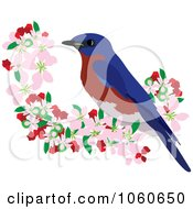 Royalty Free Vector Clip Art Illustration Of A Bluebird Perched In Apple Blossoms 1