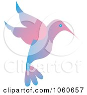Blue And Pink Hummingbird