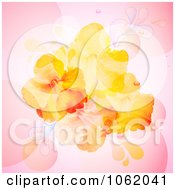 Hibiscus Flowers On Pink