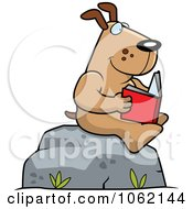 Dog Reading A Book On A Boulder by Cory Thoman