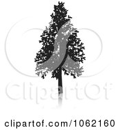 Clipart Fir Tree Silhouette Royalty Free Vector Illustration