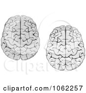 Clipart Human Brains Digital Collage Royalty Free Vector Illustration