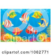 Clipart Marine Fish And A Coral Reef Royalty Free Illustration by Alex Bannykh