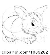 Clipart Dutch Rabbit Outline Royalty Free Illustration