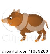 Clipart Boar Royalty Free Illustration
