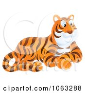 Clipart Seated Tiger Royalty Free Illustration