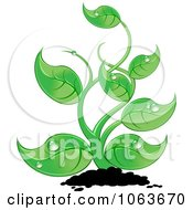 Clipart Lush Seedling Plant Royalty Free Vector Illustration