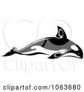 Clipart Tribal Killer Whale Black And White Royalty Free Vector Illustration