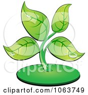 Clipart Dewy Seedling Plant Royalty Free Vector Illustration