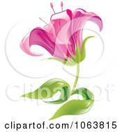 Clipart Pink Lily Flower Royalty Free Vector Illustration