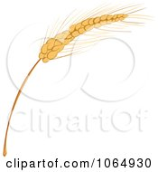 Clipart Strand Of Grains Royalty Free Vector Illustration
