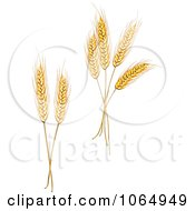 Clipart Grains Digital Collage 1 Royalty Free Vector Illustration