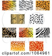 Clipart Jungle Animal Prints 3 Royalty Free Vector Illustration