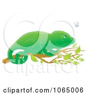 Clipart Chameleon Watching A Fly Royalty Free Illustration by Alex Bannykh