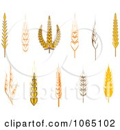 Clipart Grains Digital Collage 6 Royalty Free Vector Illustration