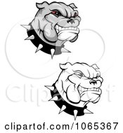 Clipart Grinning Bulldogs Collage Royalty Free Vector Illustration by Vector Tradition SM