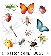 Clipart Colorful Insects Royalty Free Vector Illustration