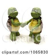 3d Tortoises Shaking Hands