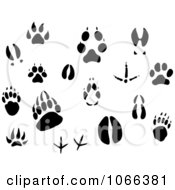 Clipart Animal Tracks Royalty Free Vector Illustration by Vector Tradition SM