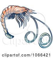 Clipart Profiled Shrimp Royalty Free Vector Illustration