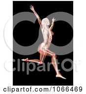 Clipart Medical 3d Female Skeleton Leaping Leg Joints Highlighted Royalty Free CGI Illustration by KJ Pargeter