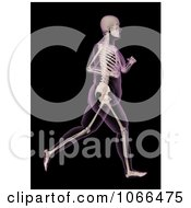 Clipart Medical 3d Overweight Female Skeleton Running Royalty Free CGI Illustration