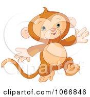 Cute Baby Monkey Running