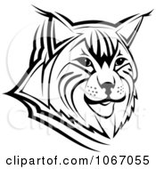 Clipart Bobcat Face Royalty Free Vector Illustration by Vector Tradition SM